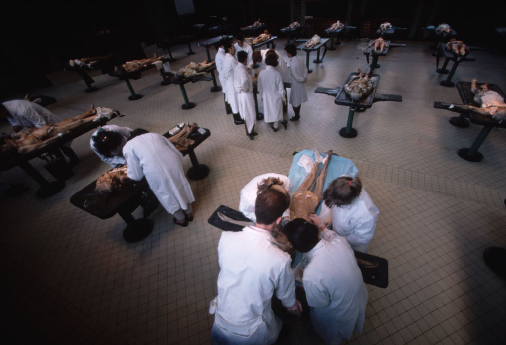February 1988 --- Medical students dissect cadavers in an operating room at the Ecole de Medicine in Paris. | Location: Ecole de Medicine, Paris, France. --- Image by © Yann Arthus-Bertrand/Corbis