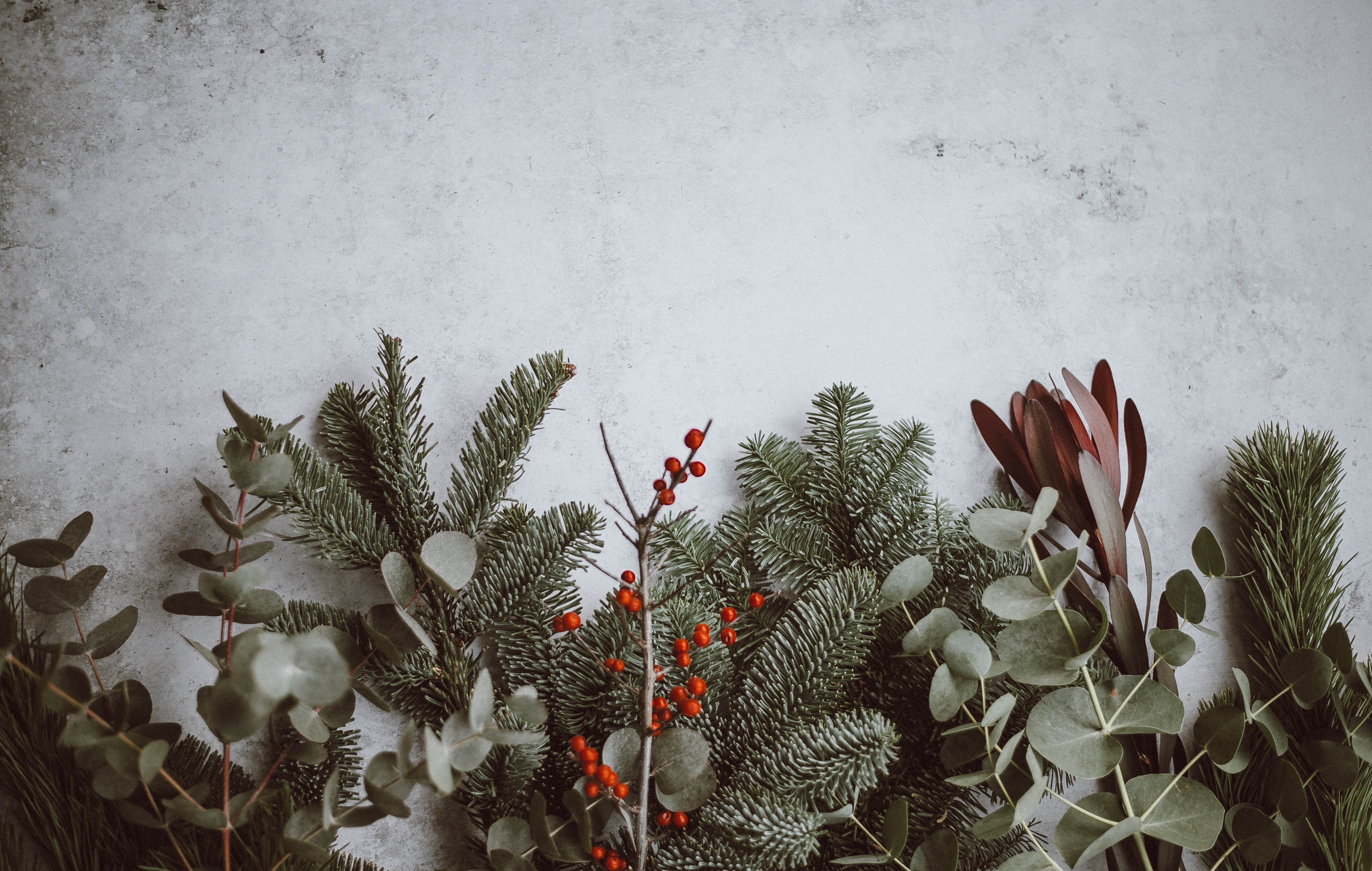 grieving over the holidays