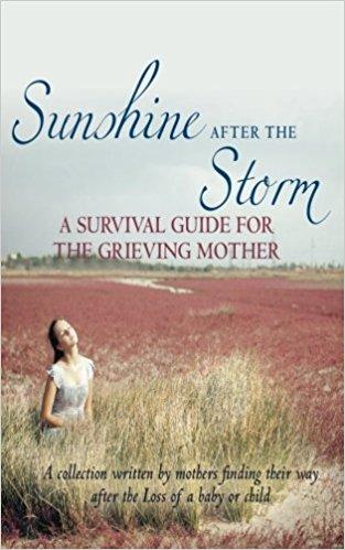 Sunshine After the Storm by Alexa Bigwarfe et al