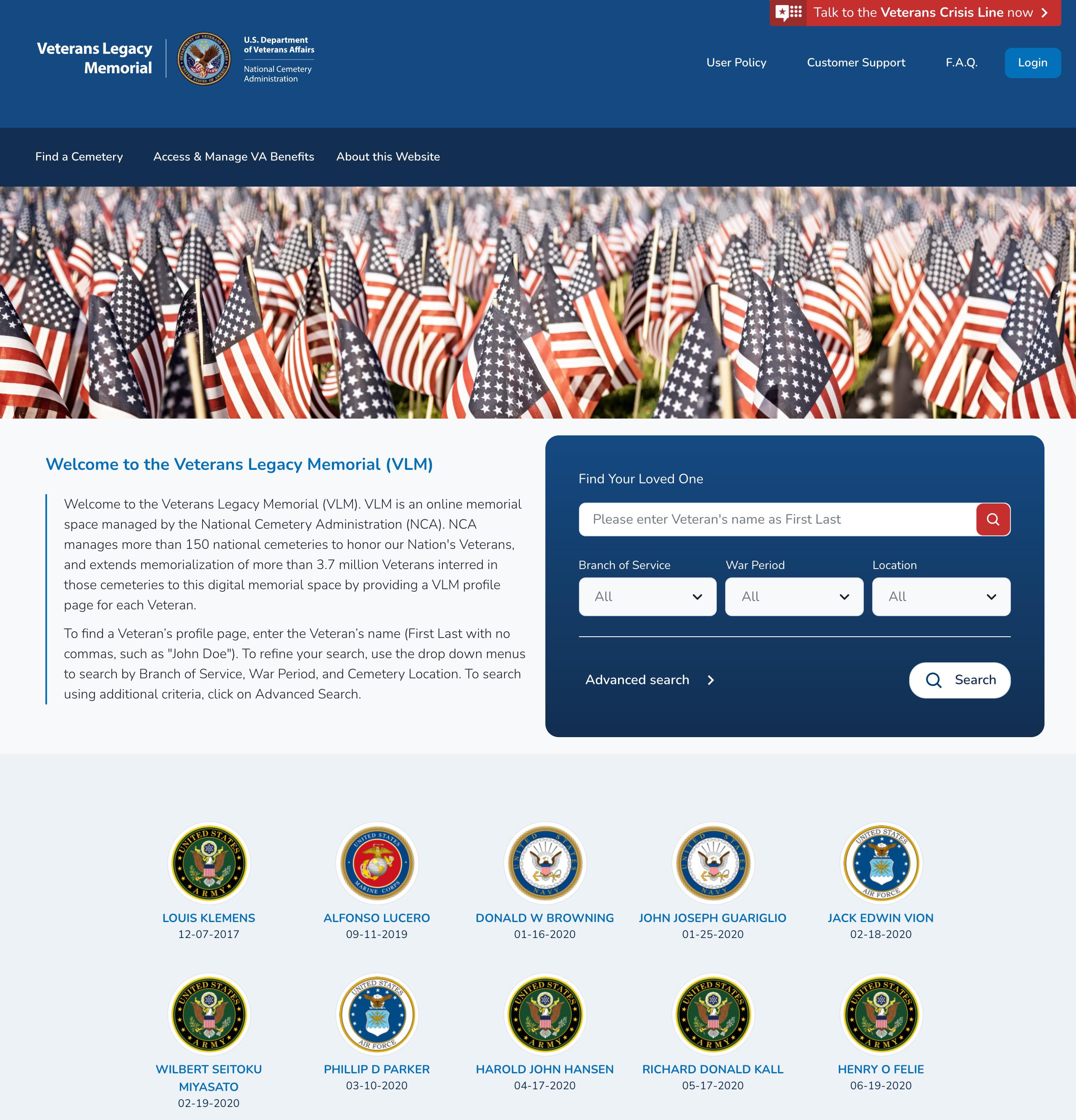 Screenshot of VLM website